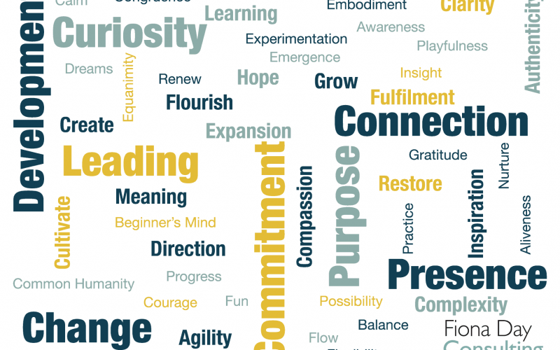 Medical Leadership Word Cloud